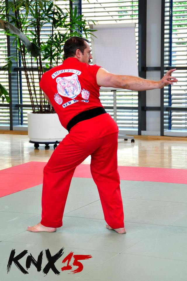 Master Ken demonstrating one of the unique moves of Ameri-Do-Te.