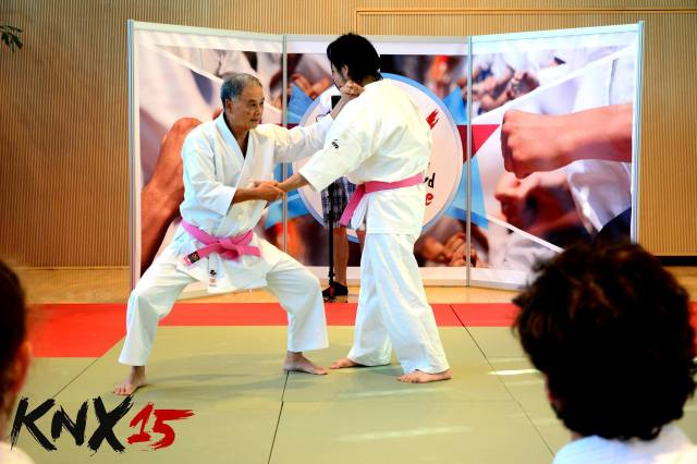 Hokama Sensei demonstrating.